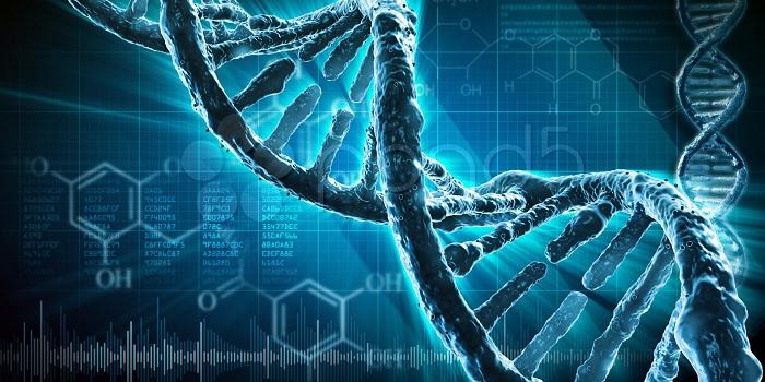 Prueba de paternidad mediante ADN
